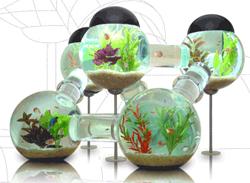 Werbung | Futuristisches Siverfish Aquarium für deine Fische
