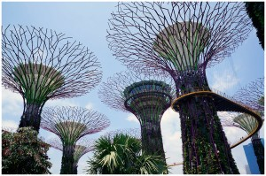Werbung | Gardens by the Bay – der Dschungel liegt mitten in Singapur – Singapore Airlines Teil IV
