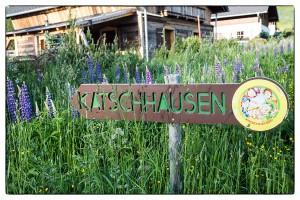 Katschhausen
