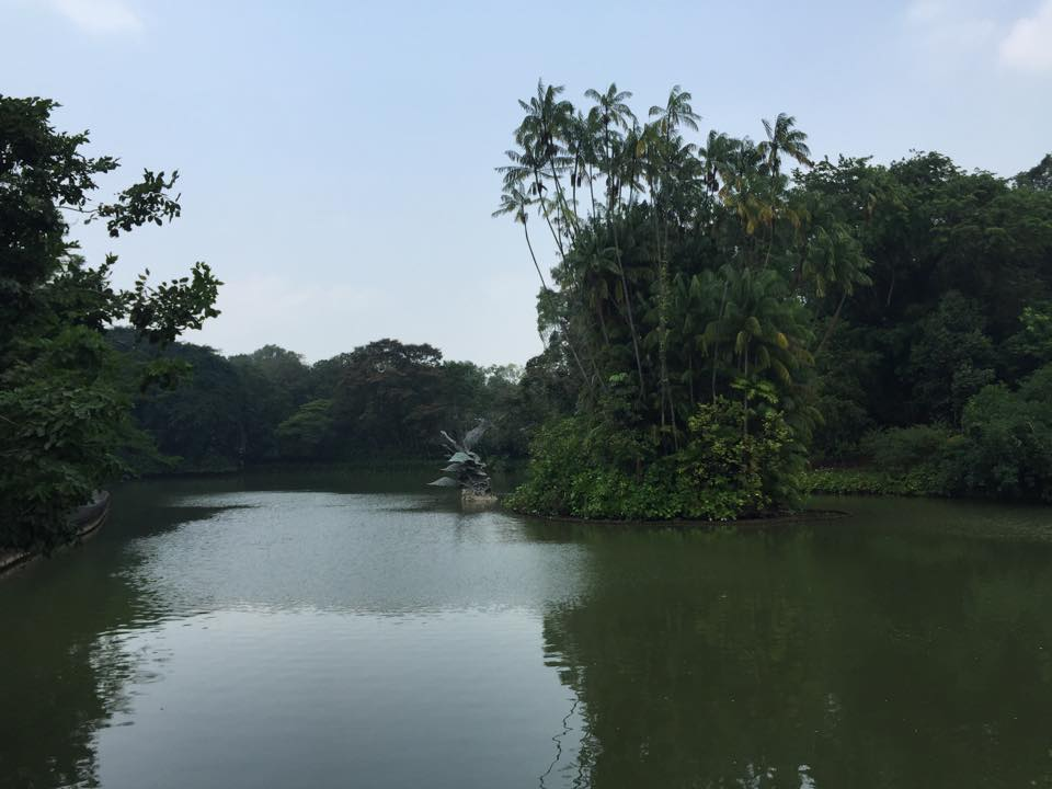 Werbung   Botanischer Garten Singapur – Die grüne Seele der Metropole #CelebrateSG50