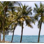 Werbung | Eine Reise nach Singapur – Erinnerungen an ein einmaliges Abenteuer #CelebrateSG50