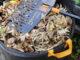 Fiskars – Ideale Helfer für die Gartenarbeit
