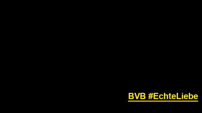 """Meine Meinung: Das hat mit """"Echte Liebe"""" nichts zu tun! #BVB"""