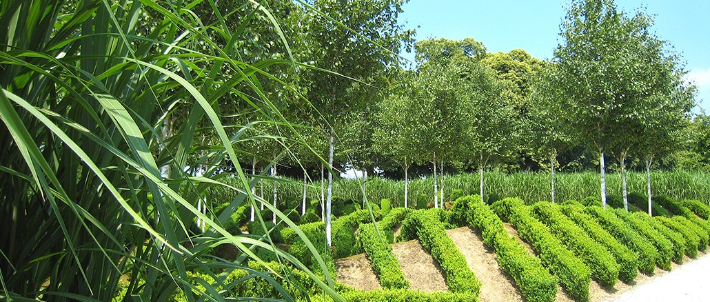 Gartenkunst im Rheinland