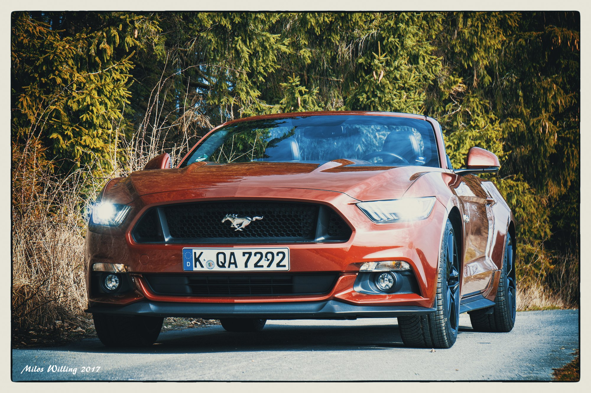 Ford-Mustang_18