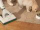 Werbung | Kobold SPB100 Akku-Saugwischer: Wischen ist das neue Saugen