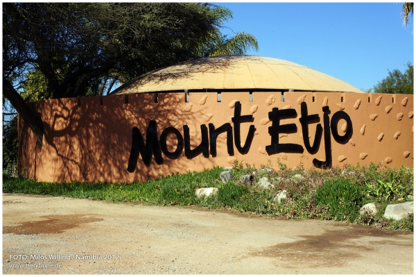 Mount Etjo Safari